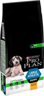 Purina Pro Plan Large Puppy Athletic Optistart kurczak i ryż