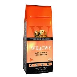 Willowy High Energy
